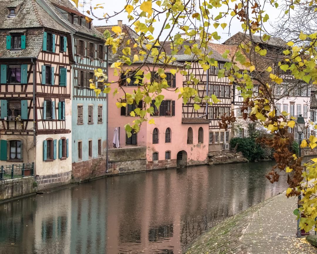 DianoMaya_Strasbourg-1155251