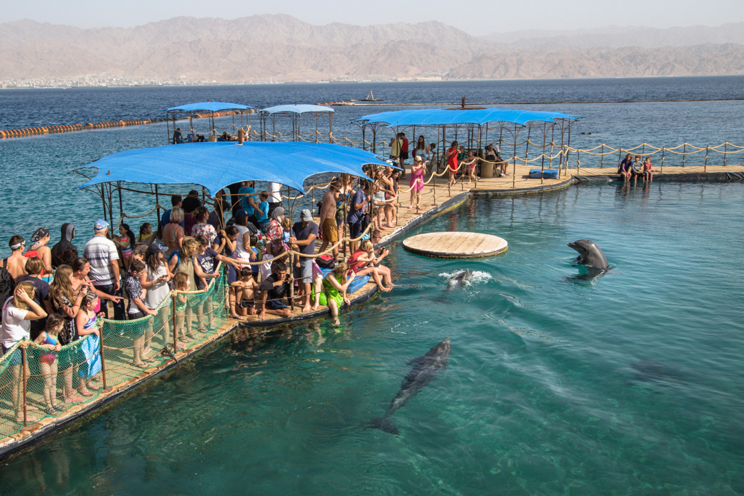 DianoMaya_Tourist Israel_Eilat-1494